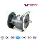 Wanshsin 110V 높은 비율에 Single-Phase 기어 흡진기