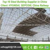 Il professionista ha saldato i sistemi personalizzati dell'acciaio per costruzioni edili di ordine