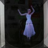 42cm 홀로그램 3D LED 팬 실내 광고 기계