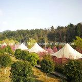 2018 Venda quentes piscina Luxury Camping tendas para Hotel Safari Top Roof tendas