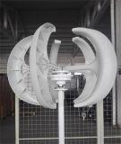 mini generatore di energia eolica di alta qualità di 300W 12V/24V/turbina di vento verticale di asse