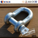 High Tensile Us Type Screw Pin D Shackle