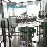 Machine automatique de remplissage à chaud pour le jus et le thé mis en bouteille