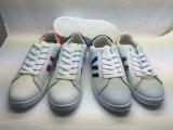 PVC /le caoutchouc/TPR les plus populaires Les chaussures de sport (6127)