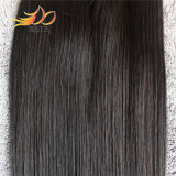 8A加工されていないバージンの人間の毛髪のペルーのまっすぐな人間の毛髪の織り方
