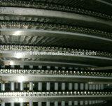 Double spirale rapide congélation machine IQF pour la nourriture Shrip