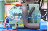 La CE aprobó el equipo de Hielo de tubo de comestibles