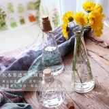 Bottiglia di vetro della zucca di Mltipurpose per il vaso e decorazione con sughero di legno