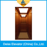 Le steel band de style villa d'accueil des passagers de LMR Ascenseur résidentiel Dkv250