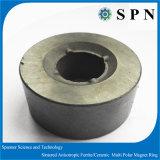 Anelli multipolari di /Ceramic del magnete permanente del ferrito per i motori facenti un passo