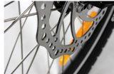 En15194는 승인했다 전기 자전거 (JB-TDN05Z)를 접히는 20 인치를