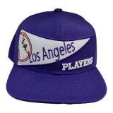 Пурпуровая горячая бейсбольная кепка Snapback сбывания с Applique Gjfp17170