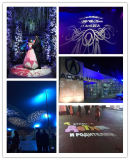 10000LM светодиодный проектор Gobo логотип свадьбы изображение фонари