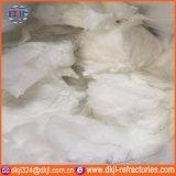 Le volume 1260 soufflé de fibre en céramique du matériau d'isolation thermique DST
