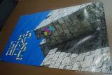 Manifesto di pubblicità su ordinazione della decorazione di caduta del PVC della bandiera dell'interno del vinile