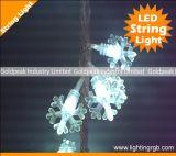 IP66 светодиодный индикатор строки/ Рождество String/Светодиодный индикатор праздника
