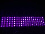5 LEDs Injeção Waterproof Injection LED Module of Outdoor Sign
