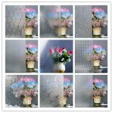 glace de /Textured roulée par 3-6mm /Figured /Patterned avec le bambou, la flore, la configuration de Mistlite etc.