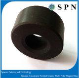 De Ringen van de Magneet van Anisotropci Permanet van het ferriet voor Motoren
