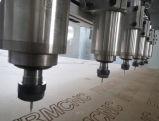 6 Spindeln hohe Effciency Holzbearbeitung CNC-Gravierfräsmaschine
