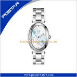 Reloj de acero del nuevo del diseño de señoras diseño europeo del reloj