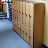 Vlek die Compacte Kast HPL voor School leveren