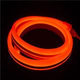 12V R-G-B-W 고품질 LED 유연한 네온 지구 빛