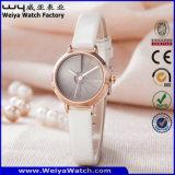Reloj de las señoras del cuarzo del cuero de la manera del ODM (Wy-133C)
