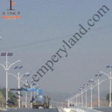 7m 50W LEDの屋外の照明(DZS-07-50W)のための太陽街灯