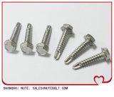 Vis drilling d'individu Hex de rondelle d'acier inoxydable