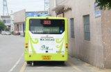 Finestra (anteriore/posteriore) di bus P10 dell'itinerario del segno programmabile del messaggio LED