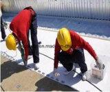 Membrane imperméable à l'eau de PVC de toits et de paquets