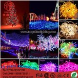 lámpara el 10mto50m de la cadena de la iluminación de 12V 24V 110V 220V RGB LED para las luces al aire libre de la luz de la Navidad del día de fiesta de la decoración 100 LED