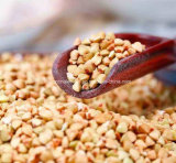 Estratto naturale del grano saraceno, sanità, flavone del grano saraceno 30%-70%