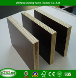 High Quality Guarantee Film Faced Plywood with Anti-Slipway and Black/Brown Film for Construction