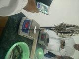 Congelados Hgt Sardinas para conserva