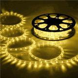 11mm LEDロープライト屋内および屋外の使用の黄色灯220V