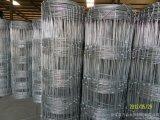 Rete fissa file resistente della galvanostegia di prezzi poco costosi