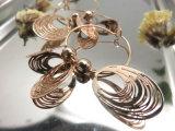 方法宝石類のアクセサリをぶら下げる金のイヤリングのたがを予約した