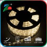 2018 IP65 밧줄 빛 LED 온난한 공정한 판단 천연두 훈장 밧줄 빛 110V 밧줄 빛 11mm