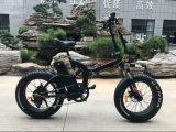 "Lithium-Batterie-elektrisches Fahrrad des TUV-20 "" Aluminiumrahmen-48V/500W"
