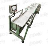 Clasificación de la línea de producción de pepino para la exportación de SGS CE