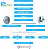 Matcha grüner Tee-Pflanzenauszug-Polyphenole