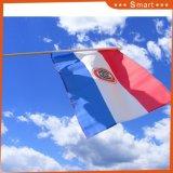 Custom оптовой Соломоновы мини ручной флаг