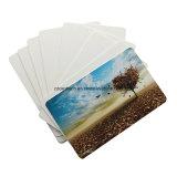 Пустая карточка удостоверения личности Inkjet PVC белизны/карточка Inkjet Printable пластичная