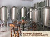Venta caliente para el equipo de micro cervecería Pub y Hotel 500L