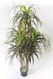 Migliori piante artificiali di vendita di alta qualità del Yucca Gu-Mx08092707