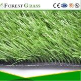 フットボールの人工的な草、スポーツの草