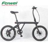 2018 nouveaux E-Bike avec batterie cachés (FR-Z2)