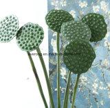 Novos Produtos de Plástico Vegetal Lotus Seedpod artificiais para o arranjo floral